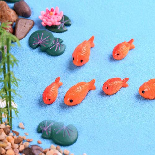 Cá cảnh trang trí