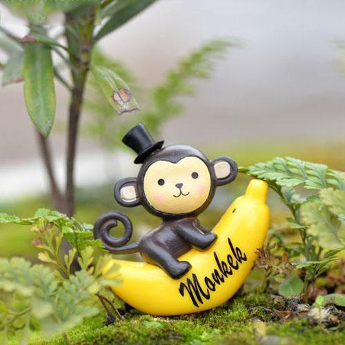 Chú khỉ Kute